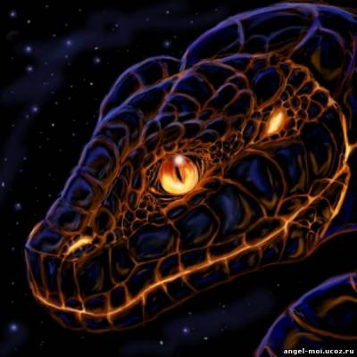 год черной, водяной Змеи 2013
